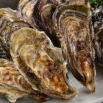 浦村の牡蠣食べ放題の予約は早めに!口コミ評判は?
